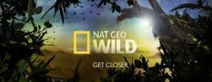 AD Nat Geo Wild HD 300x116 تردد قناة ناشيونال جيوغرافيك وايلد AD Nat Geo Wild HD علي نايل سات