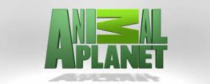 Animal Planet 300x121 تردد قناة osn Animal Planet علي النايل سات