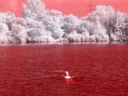 صور بالأشعة تحت الحمراء