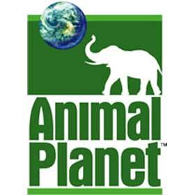 قناة Animal planet