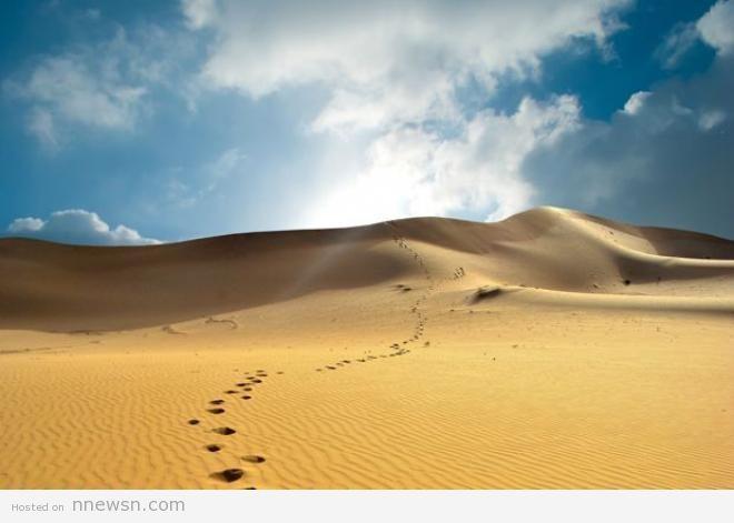 صحراء ثار الهند