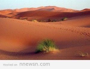عرق الشبى 300x230 السياحة في عرق الشبى Erg Chebbi بالمغرب بالصور