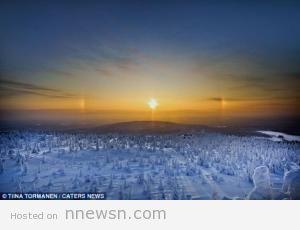 غابة جليد بالقطب الشمالي 300x230 صور غابات السنوبر المتجمدة في القطب الشمالي