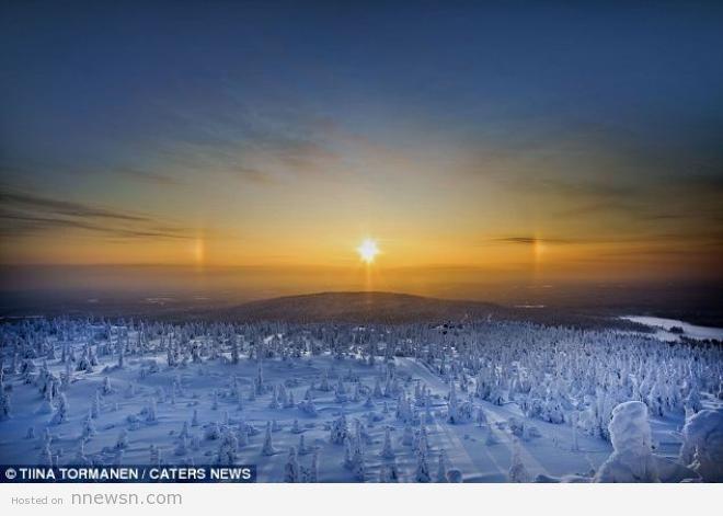 غابة جليد بالقطب الشمالي