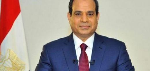 صندوق تحيا مصر alsisi 2015