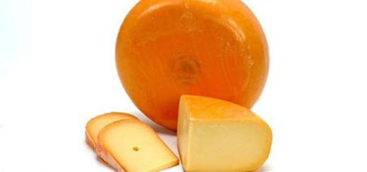 الجبنة الجودة