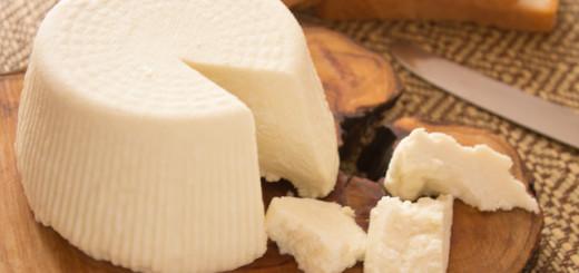 الجبنة الريكوتا اللبنة