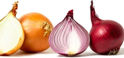 بصل ابيض و احمر Onions