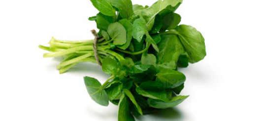 جرجير Watercress