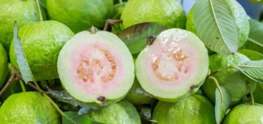 جوافة guava