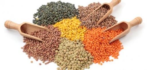 عدس lentils