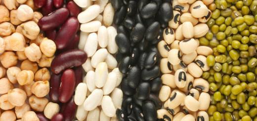 فاصولياء beans