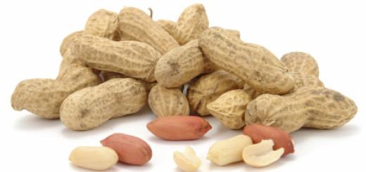 فوال سوداني Peanuts