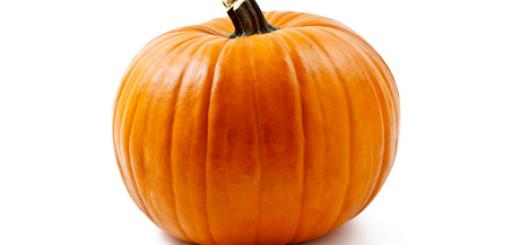 قرع Pumpkin