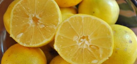 ليمون حلو Sweet Lemon